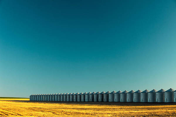 Bin Wall Art - Photograph - Long Line Of Bins by Todd Klassy