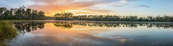 Everglades Photograph - Long Morning by Jon Glaser