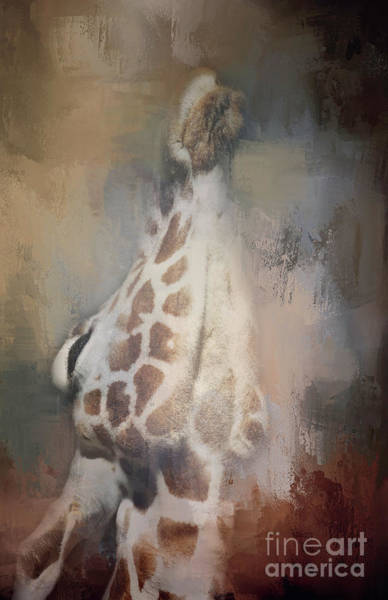 Photograph - Long Neck by Pam  Holdsworth
