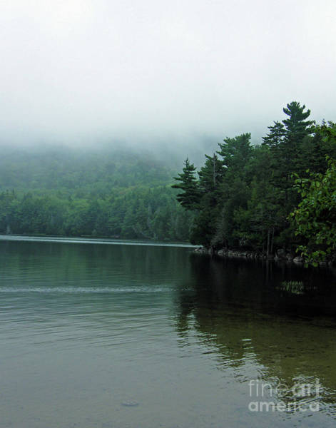 Photograph - Long Pond Mt Desert Island Main Morning by Lizi Beard-Ward