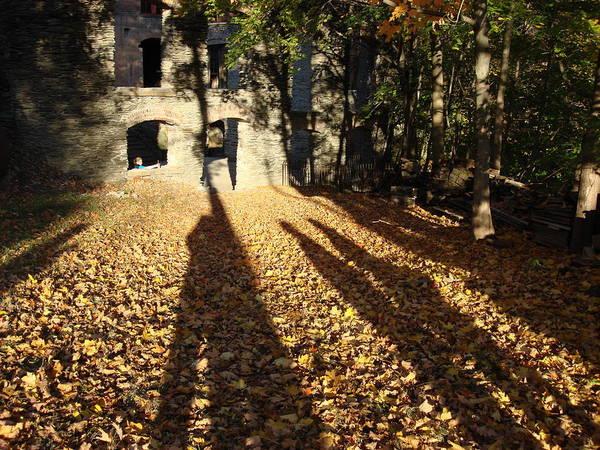 Wall Art - Photograph - Long Shadows by Dahlia Tumavicus