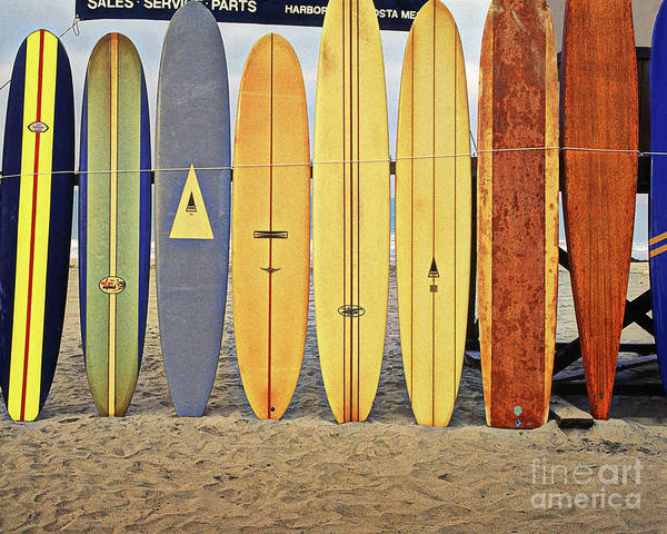 Longboard Photograph - Longboards, Newport Beach, California by Don Schimmel