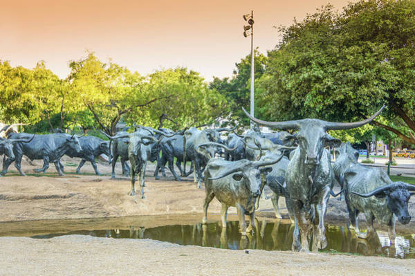 Wall Art - Photograph - Longhorn Cattle Sculpture In Pioneer Plaza, Dallas Tx by Art Spectrum