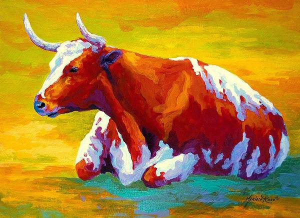 Longhorns Wall Art - Painting - Longhorn Cow by Marion Rose