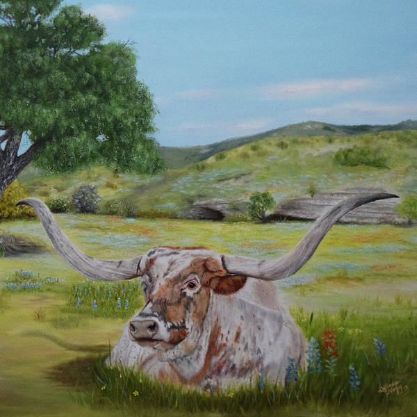 Central Texas Painting - Longhorn Life by Belinda Nagy