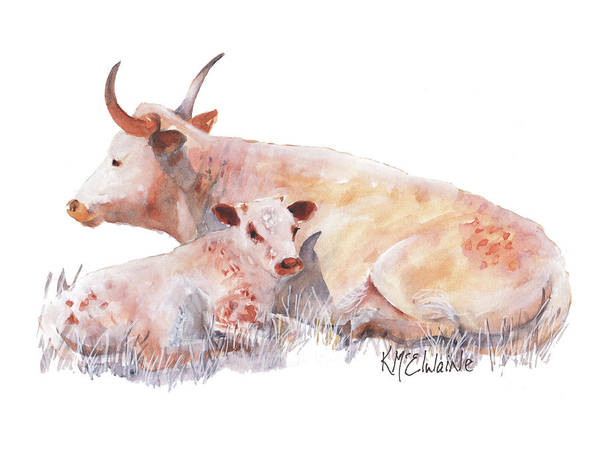 Painting - Longhorn Shade Mama And Baby Watercolor Painting By Kmcelwaine by Kathleen McElwaine