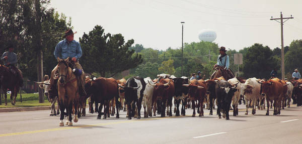 Wall Art - Photograph - Longhorns On The Move Along Chisholm Trail  by Toni Hopper