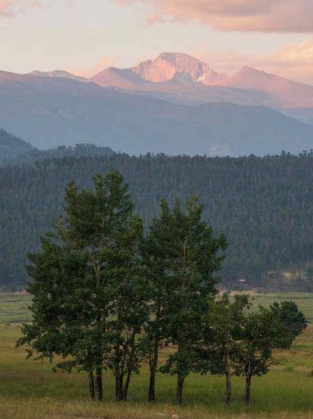 Photograph - Longs Peak From Moraine Park - Summer by Aaron Spong