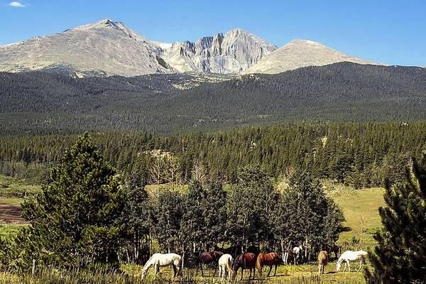 Photograph - Longs Peak by NaturesPix