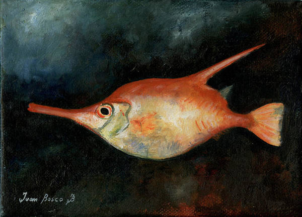 Wall Art - Painting - Longspine Snipefish by Juan Bosco