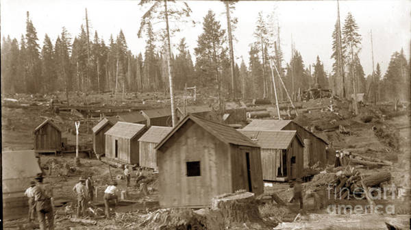 Photograph - Logging Camp Cabins On A Train Circa 1900 by California Views Archives Mr Pat Hathaway Archives