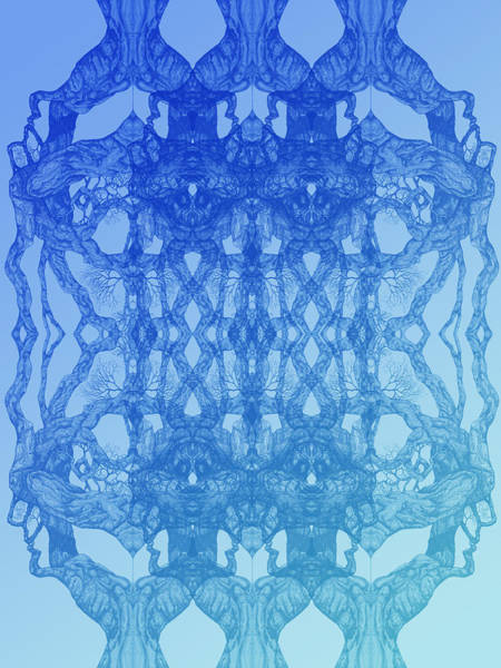 Look At You Tree 11 Hybrid Blue Art Print
