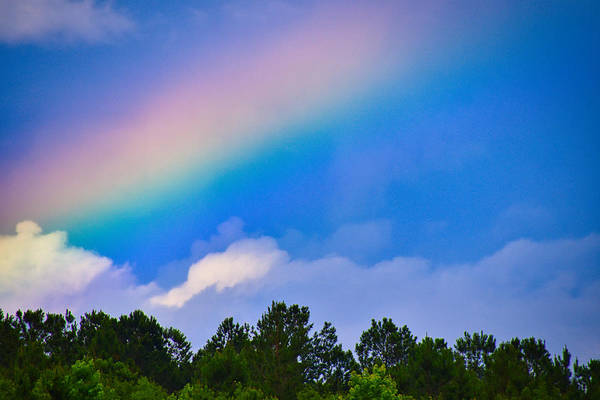 Wall Art - Photograph - Look To The Rainbow by Linda Brown