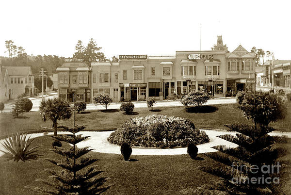 Photograph - Looking Across Garden Of El Carmelo Hotel Towards Shops Between  by California Views Archives Mr Pat Hathaway Archives