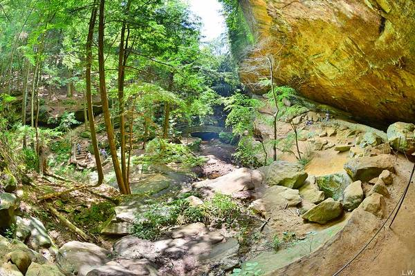 Photograph - Looking Down At Old Man's Gorge Hocking Hills Ohio by Lisa Wooten