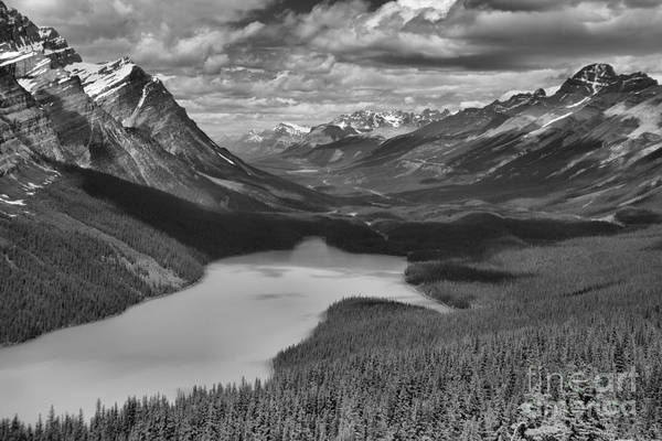 Photograph - Looking Down On Peyto Lake Black And White by Adam Jewell
