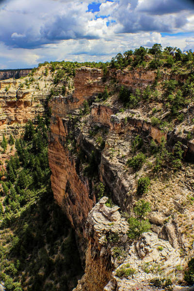 Photograph - Looking Down The Inside Face Of The Grand Canyon by Susan Vineyard