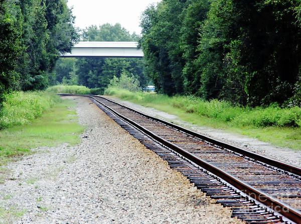 Photograph - Looking Down The Tracks by D Hackett