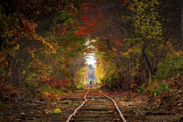 Photograph - Looking Down The Tracks by Darryl Hendricks