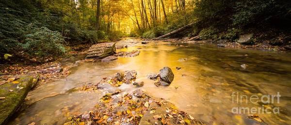North Carolina Waterfalls Photograph - Looking Glass Creek by DiFigiano Photography