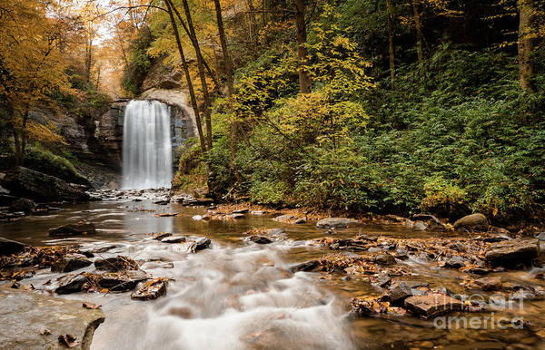 The Great Smoky Mountains Wall Art - Photograph - Looking Glass Falls by DiFigiano Photography