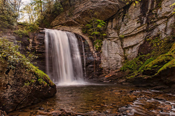Photograph - Looking Glass Falls - Pisgah National Forest by Brenda Jacobs