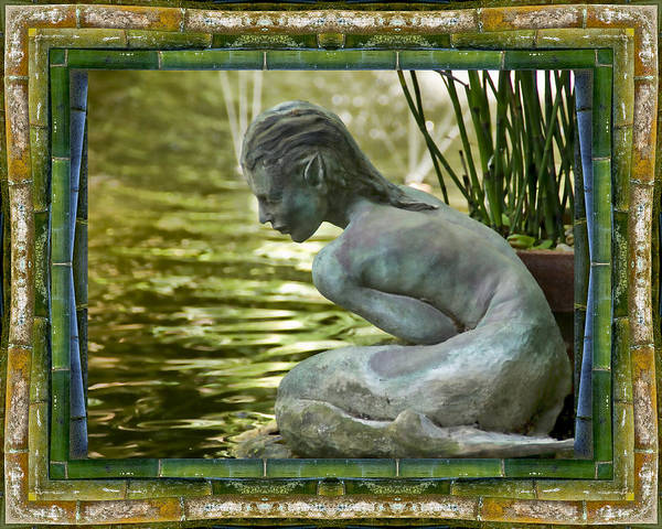 Peace And Harmony Wall Art - Photograph - Looking In by Bell And Todd