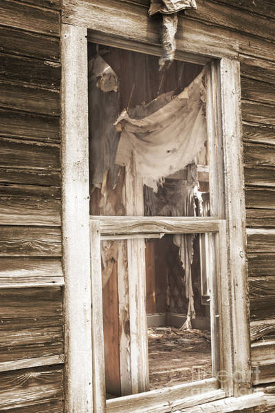 Condemned Wall Art - Photograph - Looking In by Juli Scalzi