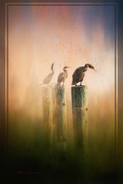 Cormorant Wall Art - Mixed Media - Looking Into The Mist by Marvin Spates