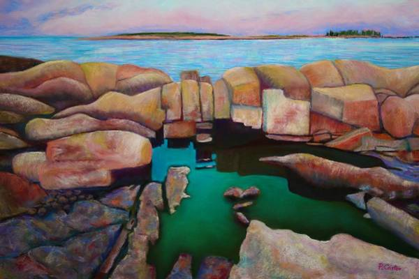 Painting - Looking Out From Blueberry Hill Schoodic Maine by Polly Castor