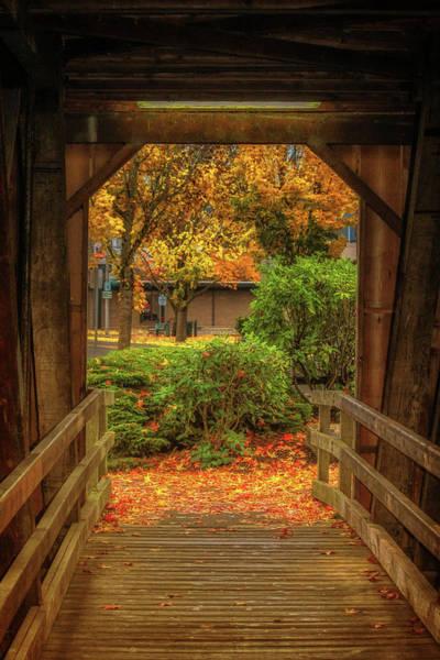 Centennial Bridge Photograph - Looking Out by Marnie Patchett