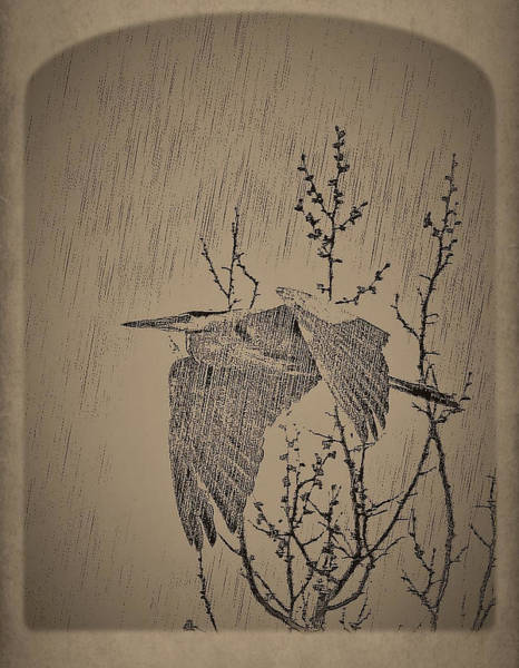Wall Art - Digital Art - Looking Out My Window On A Rainy Day by Charles HALL