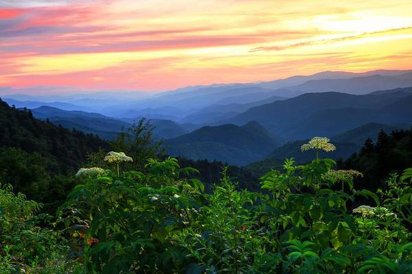 Photograph - Looking Out Over Woolyback On The Blue Ridge Parkway  by Carol Montoya