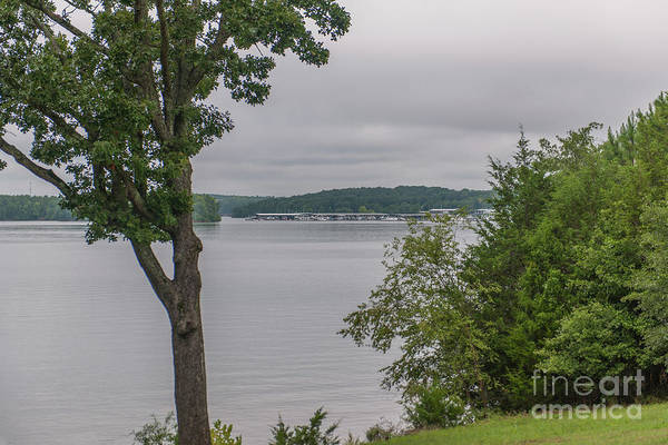 Photograph - Looking Over Lake Hartwell At Portman Marina by Dale Powell