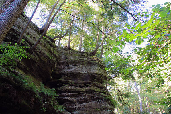Photograph - Looking Up At Cliffs by Angela Murdock