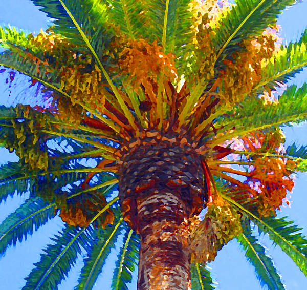 Tropical Garden Painting - Looking Up At Palm Tree  by Amy Vangsgard