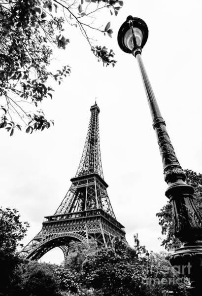 Wall Art - Photograph - Looking Up Paris by Jason Knott
