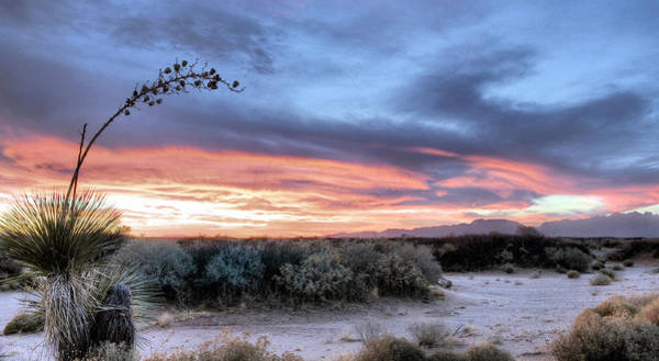 Photograph - Looking West by JC Findley