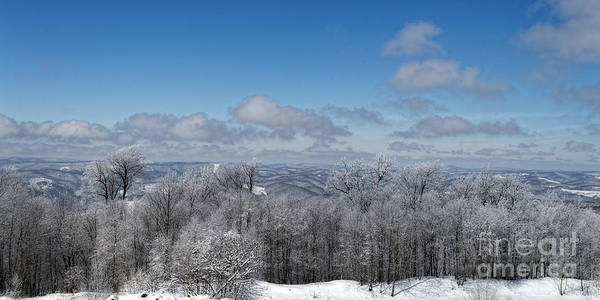 Photograph - Lookout Near Thomas Wv by Dan Friend
