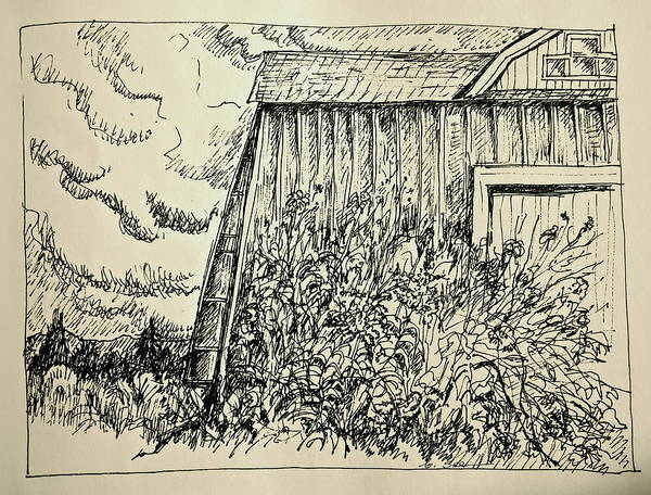 Weeds Drawing - Looming Barn by Bonnie See