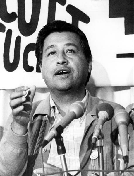 Los Angeles Cesar Chavez Leader Photograph By Everett