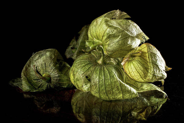 Photograph - Los Tomatillos by Robert Och