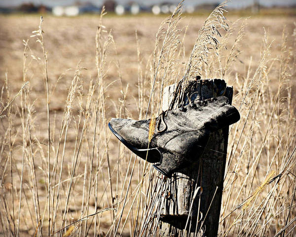 Lost River State Park Wall Art - Photograph - Lost And Found Shoe by Kathy M Krause