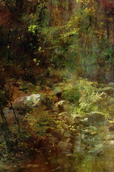 Photograph - Lost Autumn Ferns Pickle Creek 6300 Ldp_2 by Steven Ward