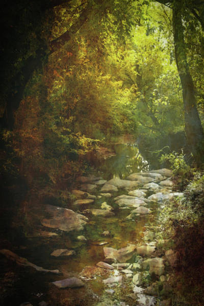 Photograph - Lost Autumn Stream 6163 Ldp_2 by Steven Ward
