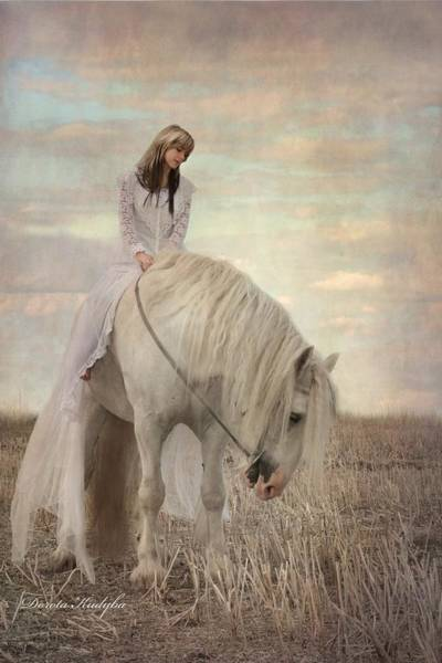 White Horse Wall Art - Photograph - Lost Elves 2 by Dorota Kudyba