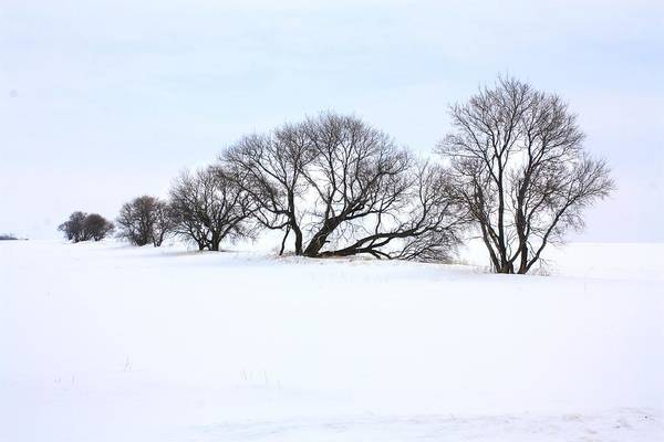 Photograph - Lost Ground by David Matthews