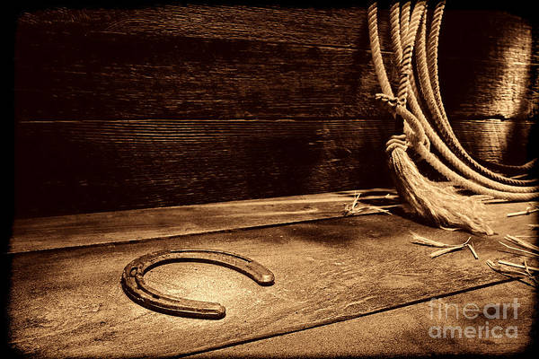Photograph - Lost Horseshoe  by American West Legend By Olivier Le Queinec