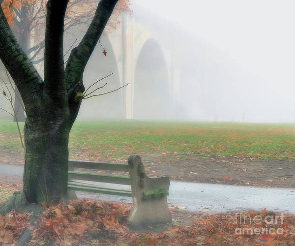 Lost In A Fog Art Print