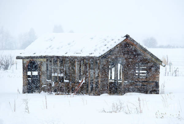 Barn Storm Wall Art - Photograph - Lost In Winter by Mike Dawson